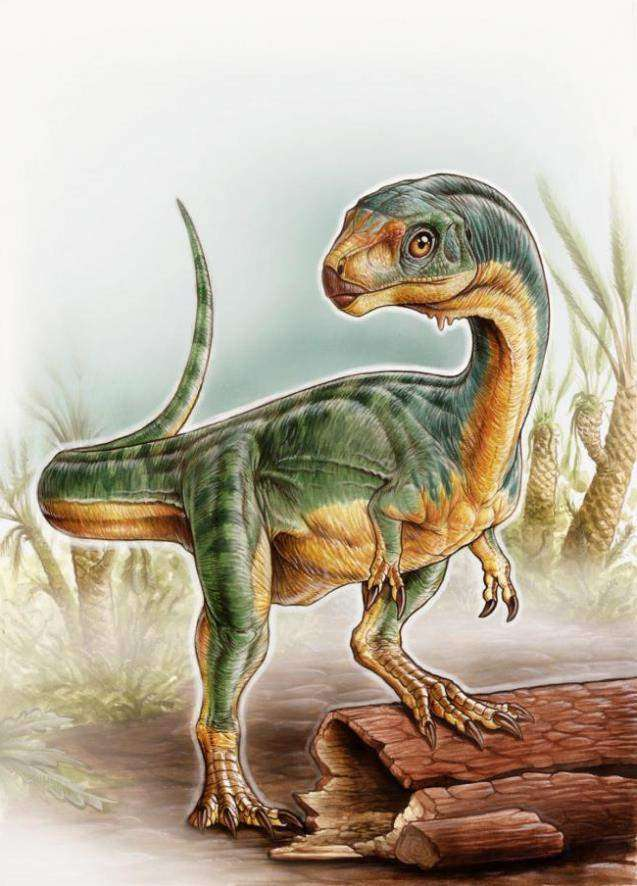 Chilesaurus diegosuarezias / University of Birmingham